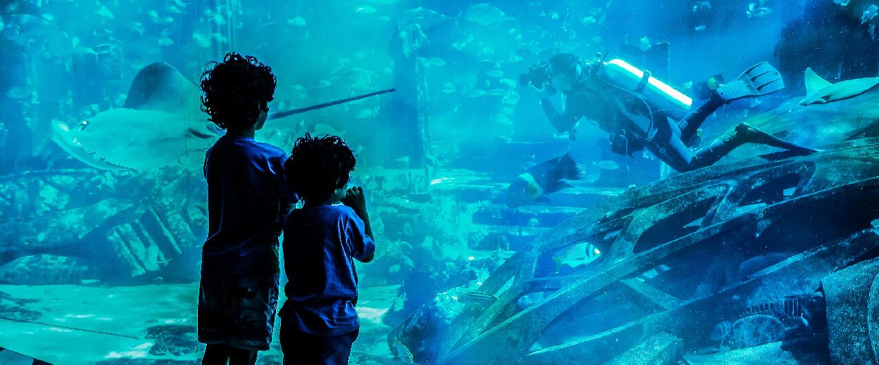 Dubai vai ganhar hotel debaixo d'água