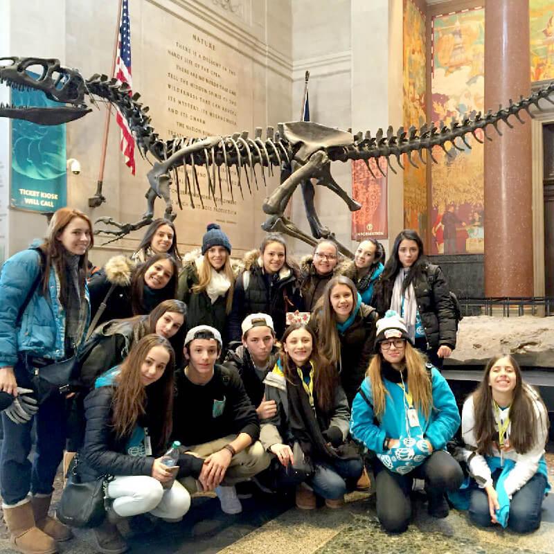 Grupo NYC – Museu de História Natural
