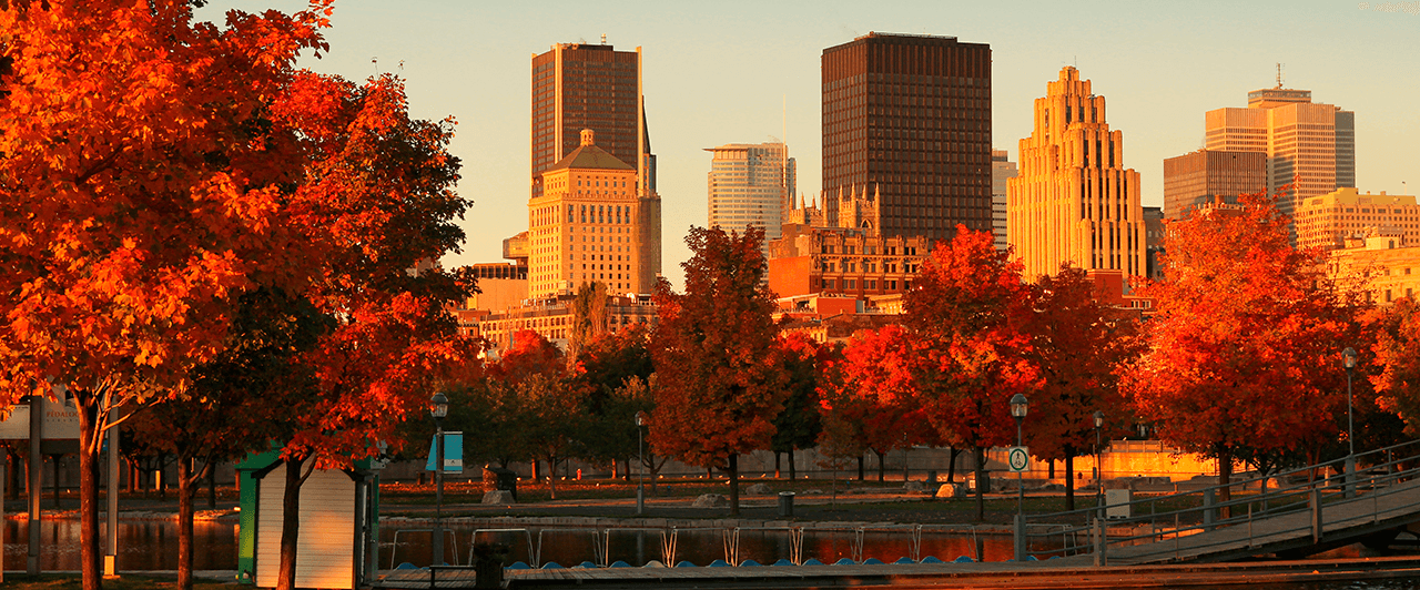 Tudo o que você precisa saber sobre Montreal