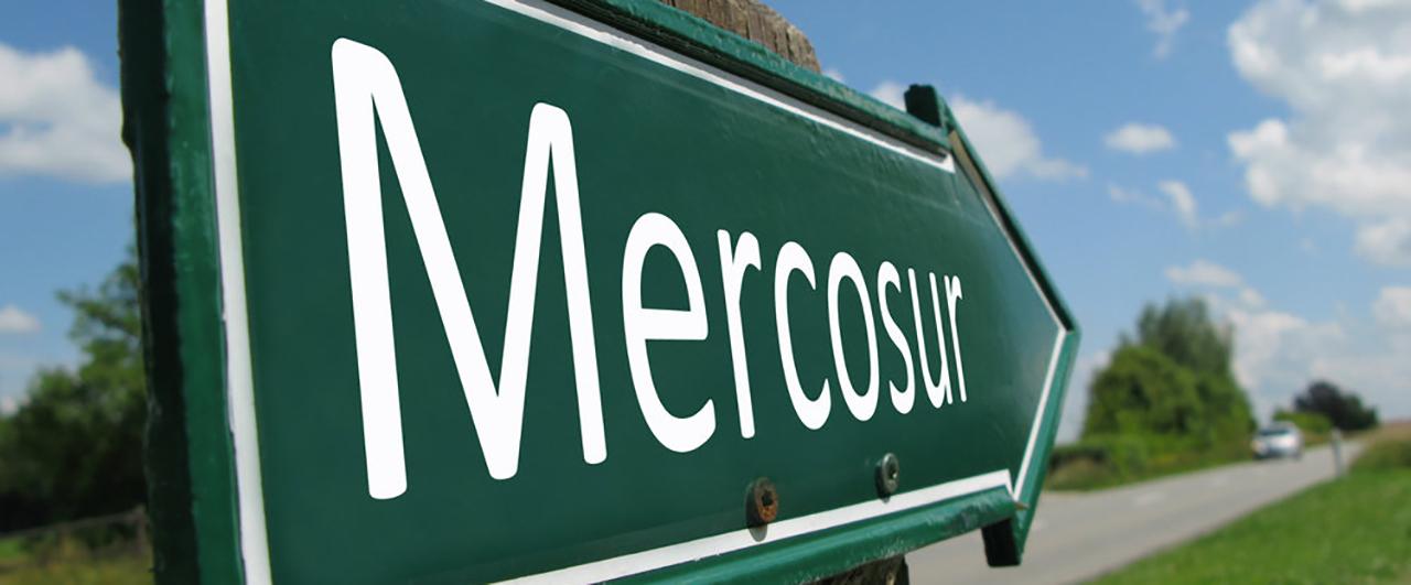 É preciso passaporte para viajar pelo Mercosul? Entenda!