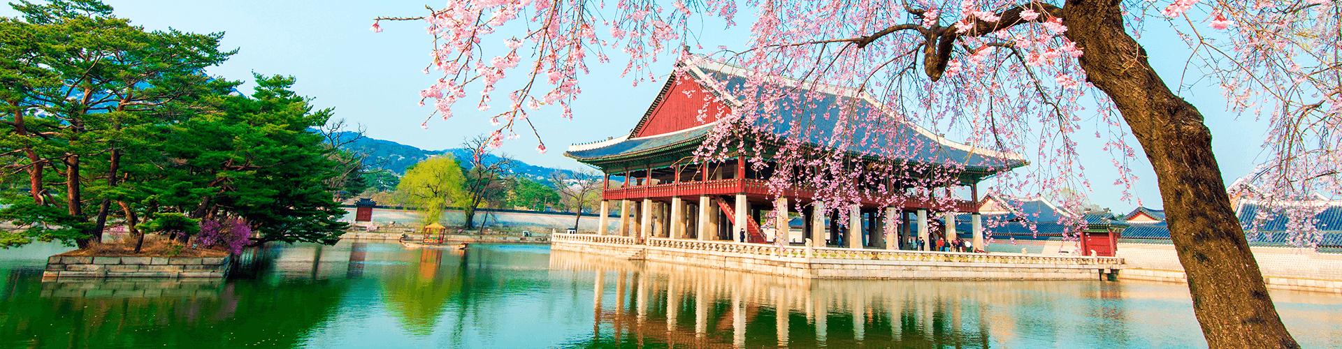 Viaje ou faça um intercâmbio para a Coreia do Sul