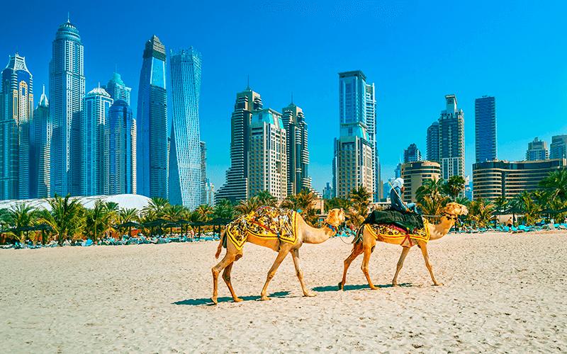 Estude e trabalhe nos Emirados Árabes Unidos, com o auxílio da Intercultural.