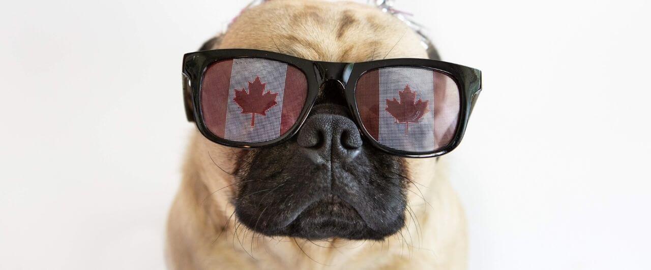 Curiosidades sobre o Canadá que você precisa saber!