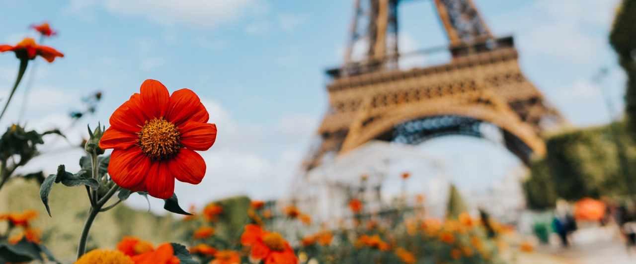 Você pode estudar francês na França! Veja as opções aqui